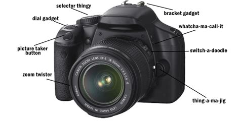 Dslr Photography Class For Beginners  Muse 10 Photography