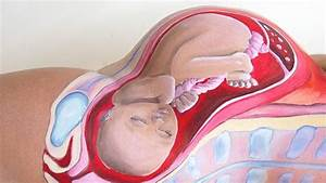Bodypaint Shows How A Baby Fits Inside A Pregnant Woman U0026 39 S