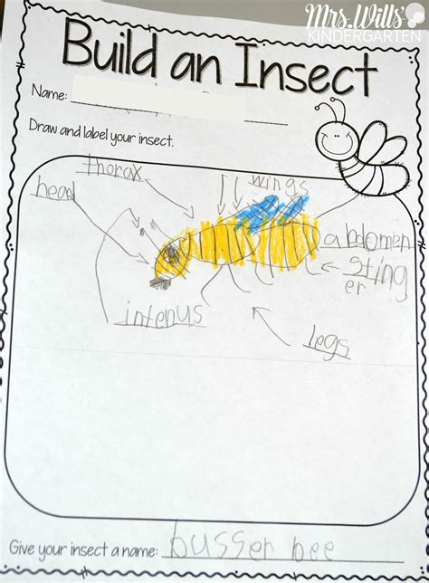 Insect Lesson Plans  Insects, Kindergarten And Activities