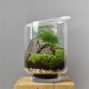 Terrarium Plante Deco : terrarium composer soi m me les raffineurs ~ Dode.kayakingforconservation.com Idées de Décoration