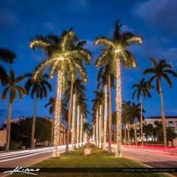 royal palm tree christmas lights palm beach island