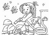 Coloring Pages Garden Watering Flowers Printable Adults sketch template