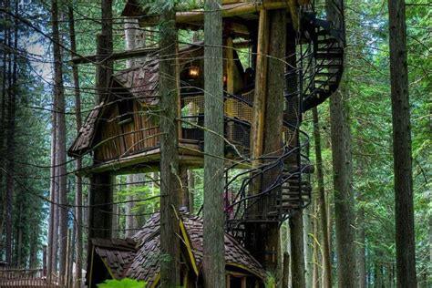 Top + Amazing Treehouses Architecture Around The World