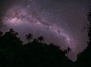 Reincarnation, Dung Beetles, and the Southern Milky Way ...