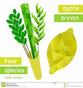 Sukkot Symbols Stock Vector - Image: 43490937