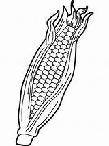 Corn Coloring Pages Indian Sweet Drawing Vegetables Print Getdrawings Printable Fall Getcolorings Recommended sketch template