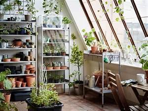 Kleines Gewächshaus Ikea : ein gro es gew chshaus mit grauen regalen f r blument pfe ~ Michelbontemps.com Haus und Dekorationen