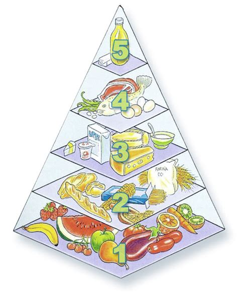 alimentazione sana ed equilibrata salute i consigli per un alimentazione sana ed