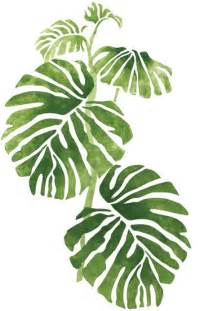 photos and inspiration jungle plans quickly and easily create a jungle inspired design in your