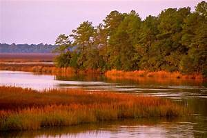 Winter In The Lowcountry  Ace Basin  South Carolina  U00a9 Doug Hickok All Rights Reserved Hue And