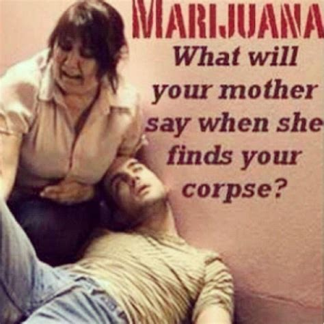 Marijuana Overdose Meme - 28 exles of ridiculous 20th century anti marijuana propaganda