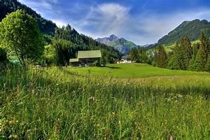 Schöne Bilder Kaufen : sch ne bunte wiesen foto bild landschaft berge h tten u wege bilder auf fotocommunity ~ Orissabook.com Haus und Dekorationen