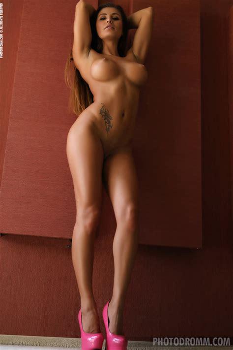 Allison S Hot Fit Bod Tmgdlt