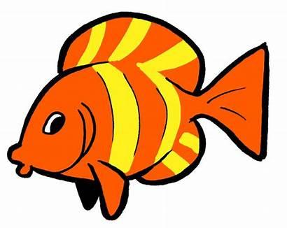 Clipart Goldfish Cartoon Fish Cracker Three Tub