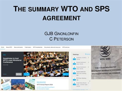 summary wto  sps agreement
