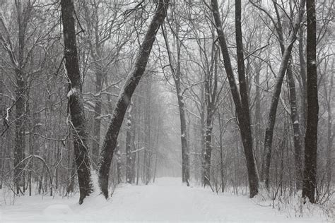 winter weather forecast 2016 2017 winter weather u s