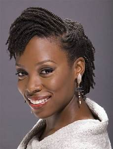 86 best images about Natural Hair Twist Styles on