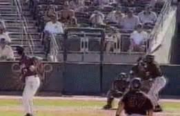 Minor-league pitcher pulls a Randy Johnson, hits bird with ...