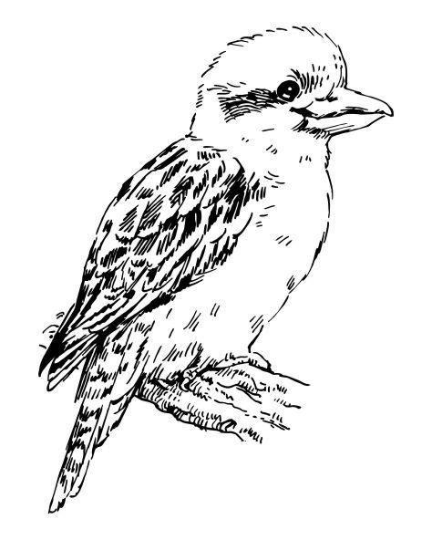 zc kookaburra small wood mounted stamp
