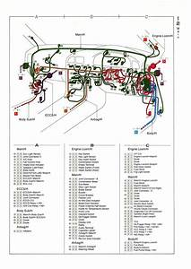 New Wiring Diagram For Trailers Australia  Diagramsample