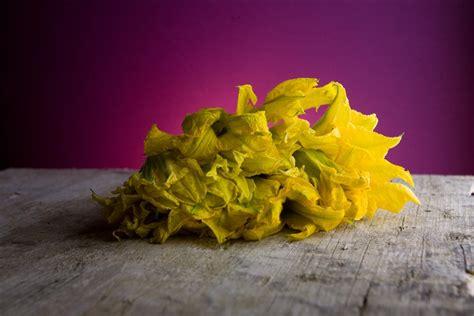 ricette primi con fiori di zucca pasta con fiori di zucca l idea per preparare e cucinare