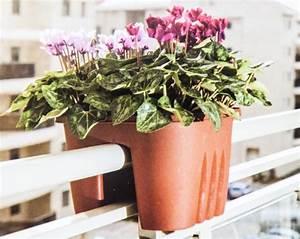 Pot Pour Balcon : pots de fleurs balcon pour balustrade bac plantes pot ebay ~ Teatrodelosmanantiales.com Idées de Décoration