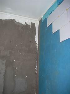 Faux Plafond Pvc : lambris pvc salle de bain 1 indogate faux plafond salle ~ Premium-room.com Idées de Décoration