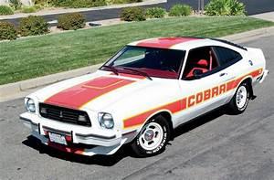 1978 Ford Mustang Cobra II - Having II Much Fun Photo & Image Gallery