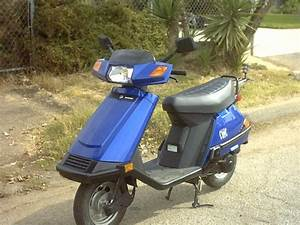 How Many Cc U0026 39 S Does The Honda Elite 80 Have  Please Help