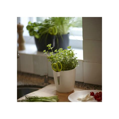 pot pour plante interieur pot pour plante aromatique interieur 28 images s 233 lection de potagers d int 233 rieur