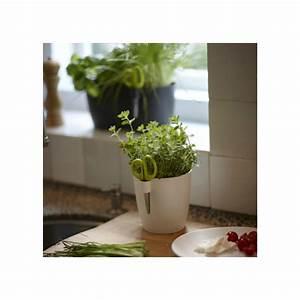 Pot Pour Plante : pot pour plantes aromatiques orchidee facile by natural element ~ Teatrodelosmanantiales.com Idées de Décoration