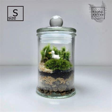 ชุดจัดสวนโหลแก้ว DIY Size S   Shopee Thailand