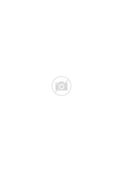 Lake County Florida Svg Incorporated Highlighted Villages
