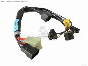 Harness Wiring No 2 For Sv650 2000  Y  Usa  E03