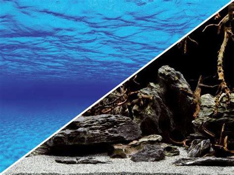 poster fond d aquarium poster aquarium 3d