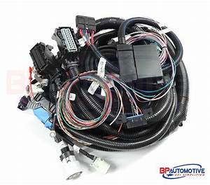 Renault Espace Iv Wiring Harness