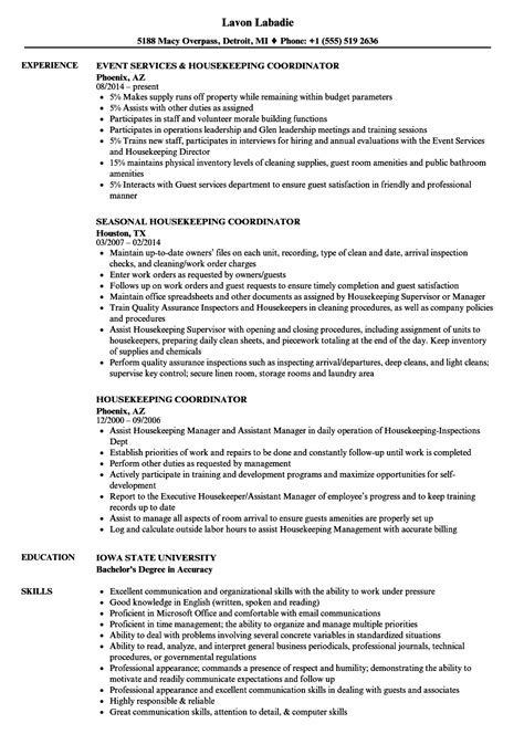 information technology curriculum vitae template free