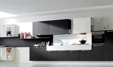 modern kitchen cabinets erika european cabinets