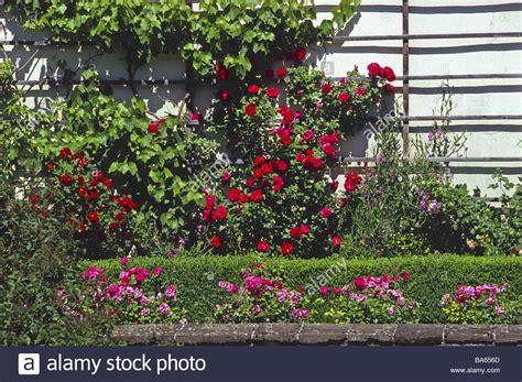 Trellis Garden Wall Stock Photos & Trellis Garden Wall