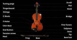 Everything You Need To Know Before Learning Violin