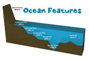 ocean floor project 5th grade