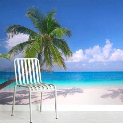 Gallery Of Chairs Palm Tree Seaside Android Wallpaper Free