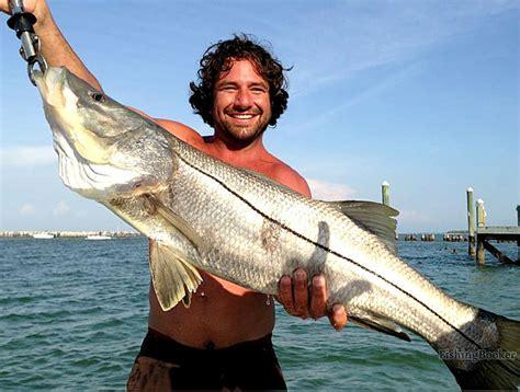 snook florida fishing tarpon fl slob springs catch charters caught fishingbooker trip