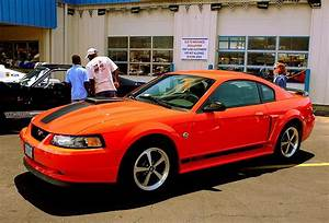 2004 Ford Mustang Mach 1 40th Anniversary Edition Pictures