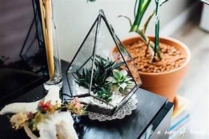 Acheter Terrarium Plante : diy terrarium de succulentes a way of travel ~ Teatrodelosmanantiales.com Idées de Décoration