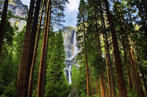 Yosemite National Park Photo Gallery Fodor Travel