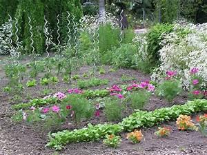 Mischkultur Im Garten : pin von antoniette lippitz auf mein garten pinterest ~ Orissabook.com Haus und Dekorationen