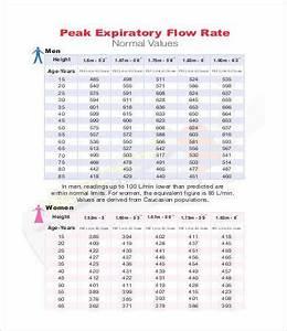 Peak Flow Chart Templates 7 Free Pdf Documents Download