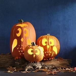 Schöne Halloween Bilder : halloween gedichte f r schaurig sch ne stimmung halloween k rbis schnitzen halloween k rbis ~ Watch28wear.com Haus und Dekorationen
