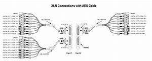 29 Xlr Wiring Diagram